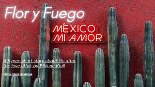 FLOR Y FUEGO by Bibiana Krall | Official Book Trailer