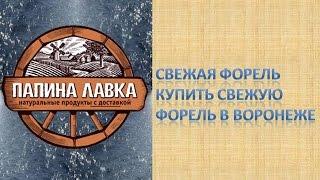 Свежая форель Купить свежую форель в Воронеже