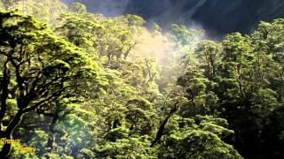 DJ Gard The Last Sunrise (Extended Edit) [Trance Nature Recordings]