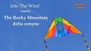 Into The Wind Rocky Mountain Delta Conyne Kite