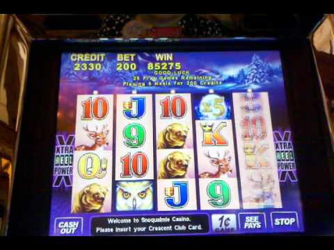 Excellent Timberwolf Slot Win With 2 Re Triggers Youtube