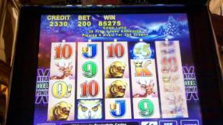 Excellent Timberwolf slot win with 2 re-triggers
