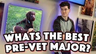 CHOOSING A PRE-VET MAJOR: How to get into Veterinary School Episode 3