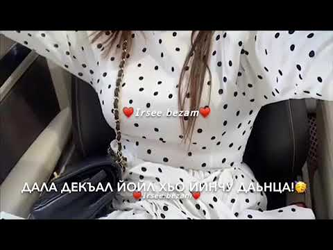 ирсе йойла хьо