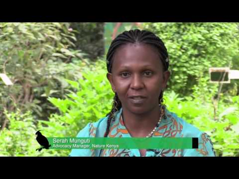 Balancing Conservation and Development in Yala Swamp