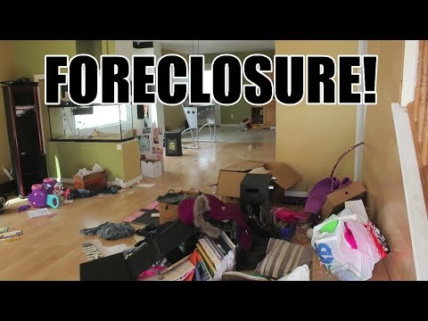 OUR FIRST FORECLOSURE TRASH OUT BID OF THE YEAR!
