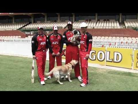 Who are you calling underdogs? Redbacks Twenty20 Big Bash 2009-10