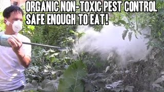 Organic Non-Toxic Pest Control that is safe enough to EAT!