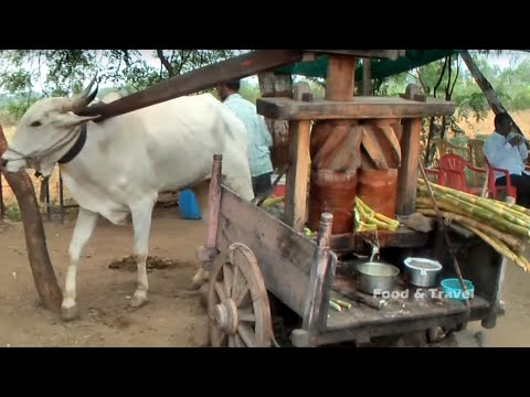 13 TYPES OF Sugarcane Juice Extraction Process | SUGAR CANE JUICE