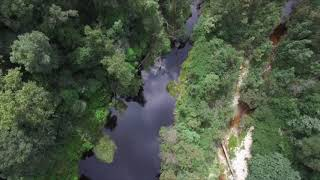 Blackwater Tubing Adventures, Garden Route
