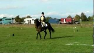 For Inspiration (Yogi) - Anstee Marriott - BE100+ Little Downham - Oct 2010