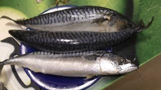 Хе из рыбы. Как приготовить хе из рыбы скумбрии