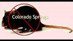 Cooks Pest Control Colorado Springs Co Exterminator Bed Bugs