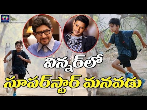 Mahesh babu Son in law in Winner Telugu Movie | Sai Dharam Tej | Telugu Full screen