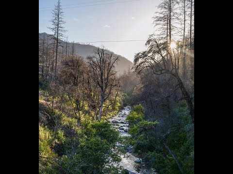 Mountain Land! 20 Acre In Shasta County, CA Near French Gulch