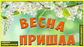 Весна Первый день весны | Красивое видеопоздравление с первым днем весны