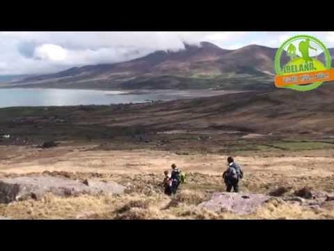 Walking the Dingle Way with Ireland Walk Hike Bike