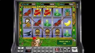 Как заработать в казино в игровой автомат Crazy Monkey. с выводом денег