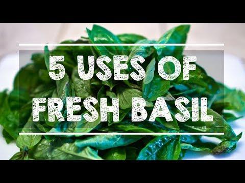 5 Uses of FRESH BASIL