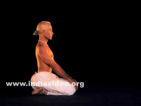 Vajrasana (The Diamond pose)