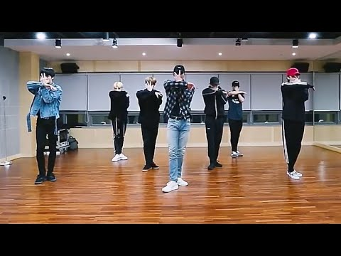 [MONSTA X-Alligator] Dance Practice Mirrored