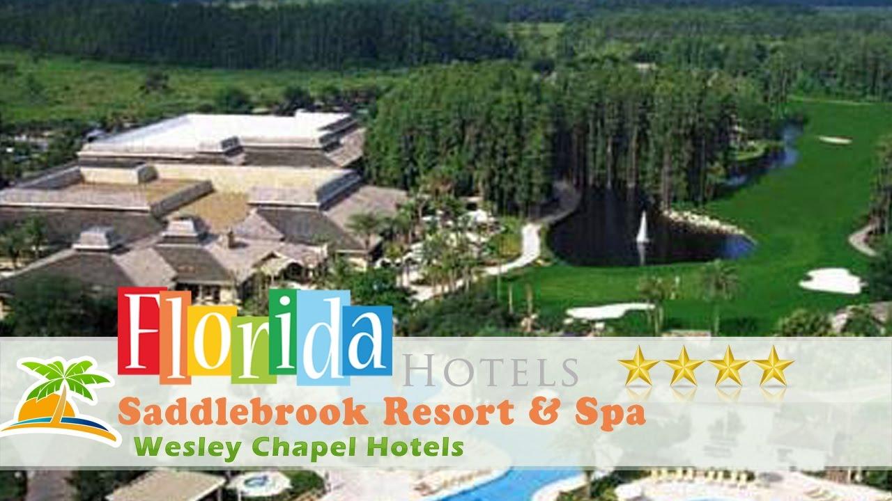 Saddlebrook Resort Spa Wesley Chapel Hotels Florida