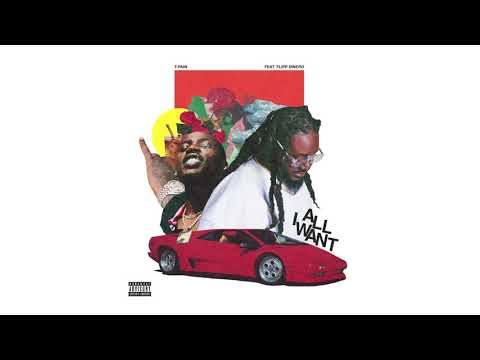 T-Pain - All I Want ft. Flipp Dinero (Official Audio)