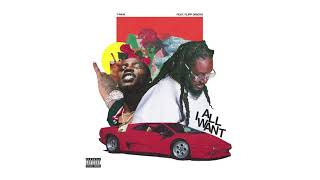 T-Pain – All I Want feat. Flipp Dinero