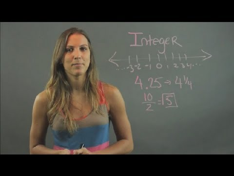 What Is an Integer in Math Equations? : Elementary Math