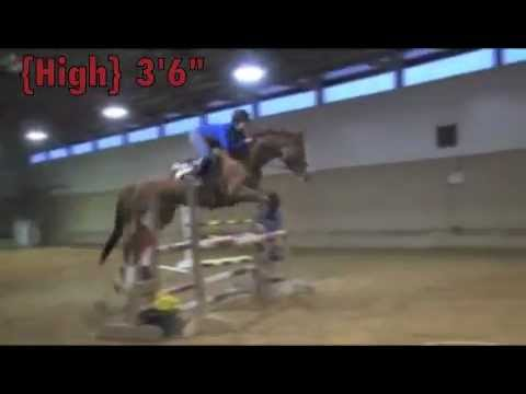 Red Coat Farm High Jump~2012 {To 5&39} - YouTube