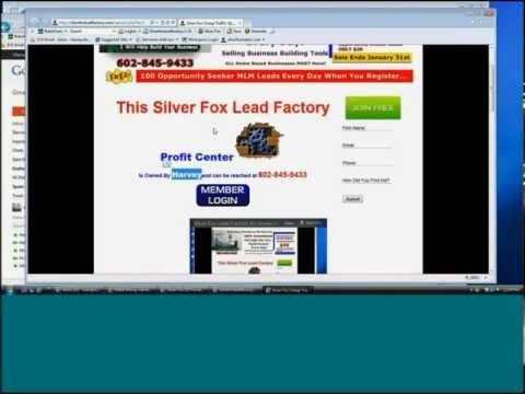 Silver Fox Cheap Traffic January Deals 20K Visitors Website 200K MLM Opportunity Seeker Leads $20