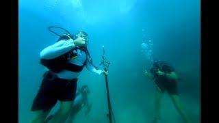 Underwater Ambisonics Audio Recording