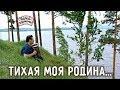 Играй, гармонь! | Геннадий Заволокин | Тихая моя Родина...