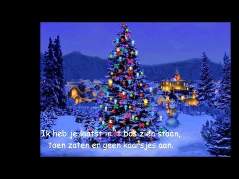 O Christmas Tree In German.Christmas Carols O Dennenboom Lyrics English Translation