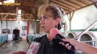 Кравеферма Рогови: Пътят от млекомата до собствения магазин