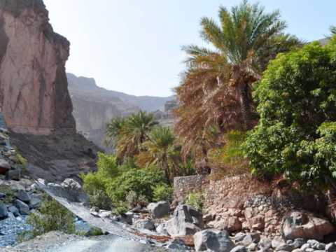 "ARABIAN ""GRAND CANYON"", OMAN"