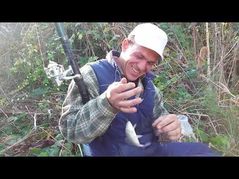 La pescuit de Caras