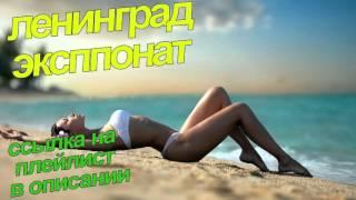 Ленинград ЭКСПОНАТ ссылка на плейлист в описании