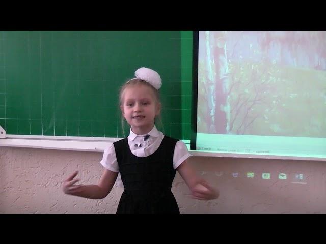 Изображение предпросмотра прочтения – КамиллаШаякова читает произведение «Чудеса» В.А.Степанова