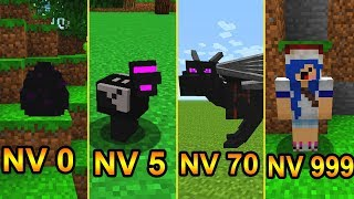 ⚠️ NÍVEIS DO ENDERDRAGON- MINECRAFT ⚠️