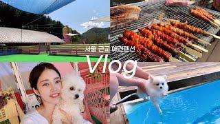 [Vlog] 가평애견펜션 4인 11만원 수영장+운동장+…