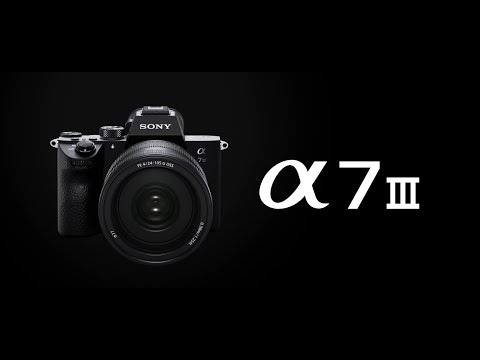 Sony ILCE-7M3 α7 III 可換鏡頭數碼相機 (淨機身) 相關視頻