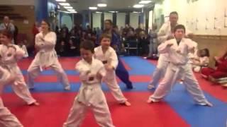 Martial Arts White Belt test Warwick NY