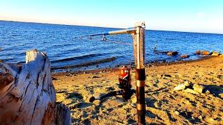 рыбалка на КИТАЙСКИЕ УДОЧКИ КОТОРЫЕ ЛОВЯТ РЫБУ САМИ ОНИ ОБЛОВИЛИ ВЕСЬ БЕРЕГ