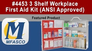 Ansi Z308 Workplace First Aid Kit