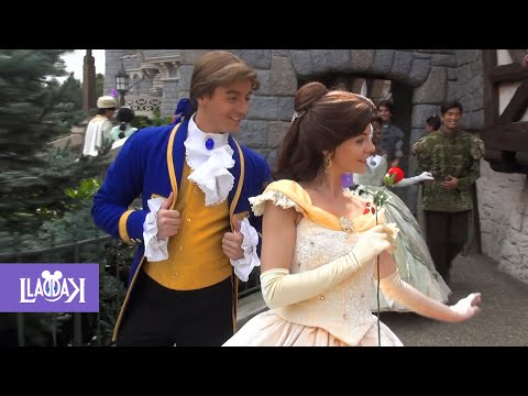 Disney Princesses and Princes  - Disneyland Paris