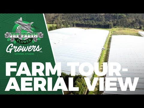 Jet Fresh Flower Growers, S.A. - Cotopaxi, Ecuador Aerial View - Mavic Pro Drone