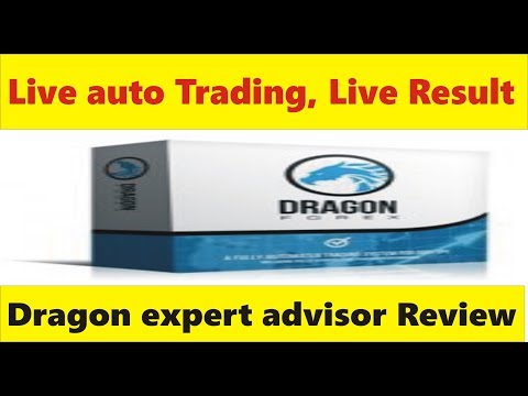 Dragon expert advisor live trading & Result | Best auto trading tutorial in Hindi & Urdu Tani Forex thumbnail