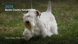 2019 Bucks County Kennel Club Dog Show