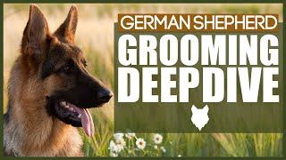 GERMAN SHEPHERD GROOMING DEEPDIVE